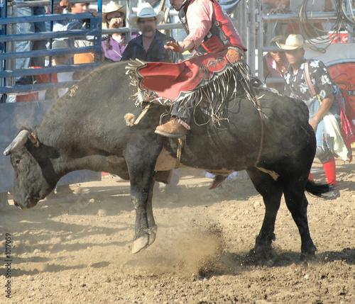 Staande foto Stierenvechten bull & rider