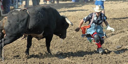 Staande foto Stierenvechten bull chasing cowboy