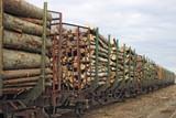 lumber goods poster