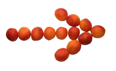 arrow, made of apricots