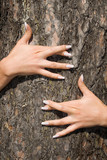 french manicure on a background of a bark-3 poster