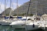 port marina poster
