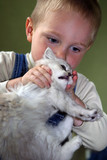 the boy plays with a kitten poster
