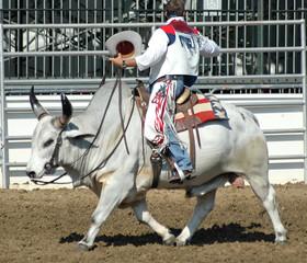 cowboy riding a brahma bull