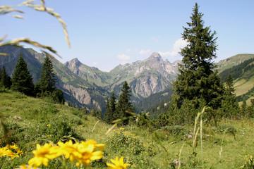 idylle in den bergen