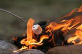 marshmallow feast poster
