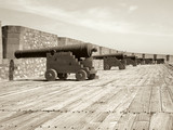 row of cannons poster