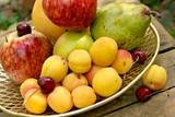 fruit still-life poster