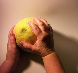 preparation melon