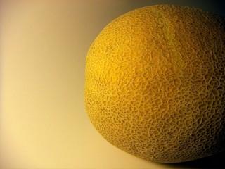 melon rind