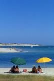 plage et parasols poster