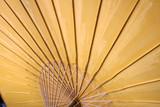 paper umbrella poster