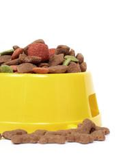 petfood bowl