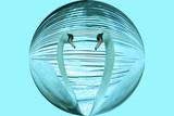 swimming round poster