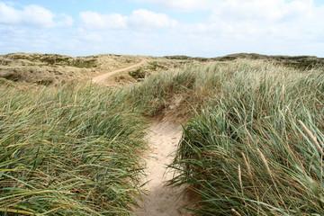 weg über die dünen von sylt