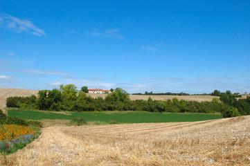 paysage de la touraine