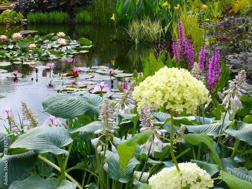 wonderful watergarden