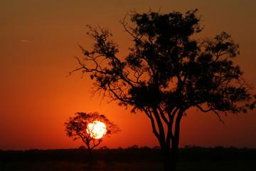 coucher de soleil et étoile filante