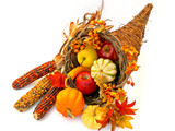 thanksgiving fall autumn cornucopia