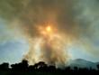 incendie de forêt en corse