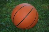 backyard basketball poster