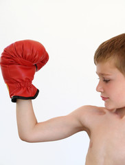 boy boxer making a muscle