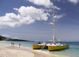 sailing in paradise