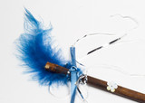 blue feather magic wand close-up poster