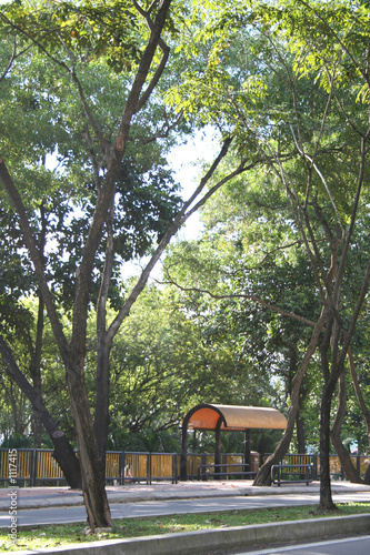 bus-stop with trees surrounding