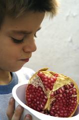 granada_fruta-03