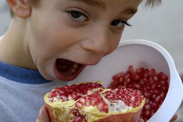 granada_fruta-10