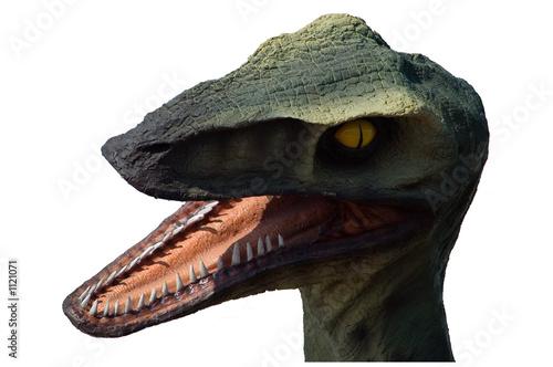 Poster tête de dinosaure