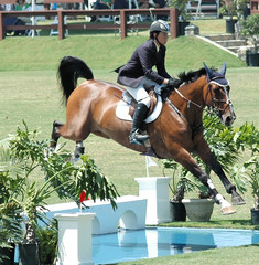 horse and rider jumping water