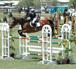 horse & rider jumping a double barrier
