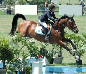 horse & rider jumping water