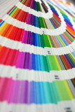 color spectrum/pantone sampler poster