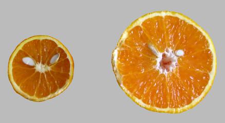 orange 10