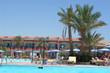 piscine paysagère 5