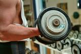 biceps 1 poster