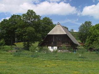 black forest farm, bauernhof im schwarzwald