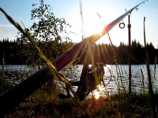 pêche aurore