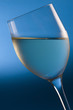 chilled white wine on blue background