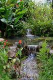 Fototapety guava plantation waterfalls