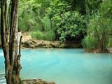 bassin turquoise dans végétation luxuriante poster