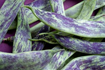 big green bean-pods