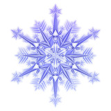 snowflake on a white poster