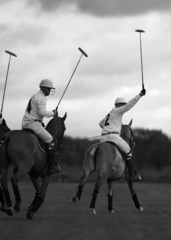 polo players. polo match in moscow, russia.