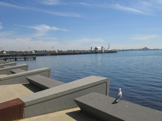 pier at geelong