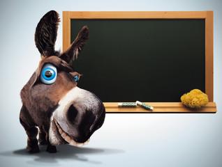 l'âne de la classe