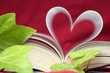 the book of love (close up)